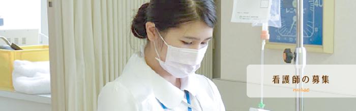 看護師の募集